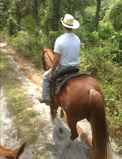 Find horse properties and ranches for sale in Naples, Florida
