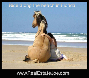 Places to ride horses on the Beach in Naples, Florida