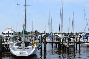 Looking for an Active Retirement, Naples City Doc is great for fishing charters.