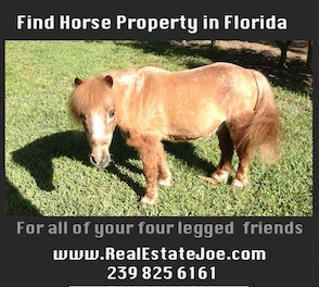 Horse Properties in Naples Florida and Equestrian Estates and ranches
